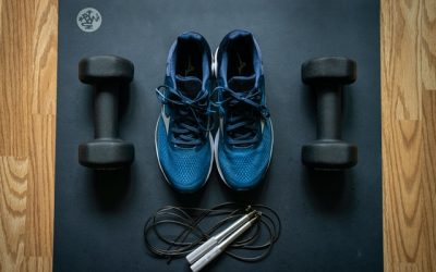 Best Small Space Workout Equipment For Dorms: 10 Easy Ideas
